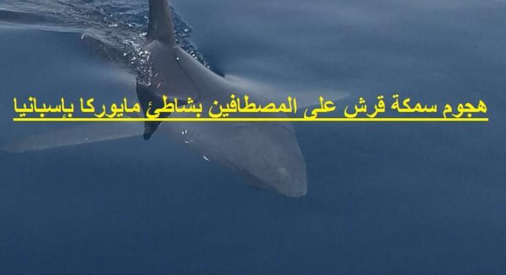 هجوم سمكة قرش على المصطافين بشاطئ مايوركا بإسبانيا_bledtv